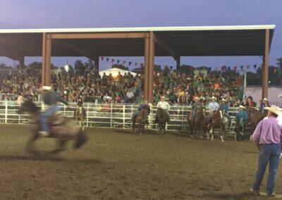 Sarpy County Fair